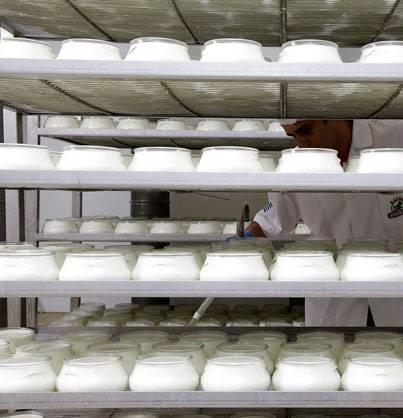 Yogurt experts AS Hellas